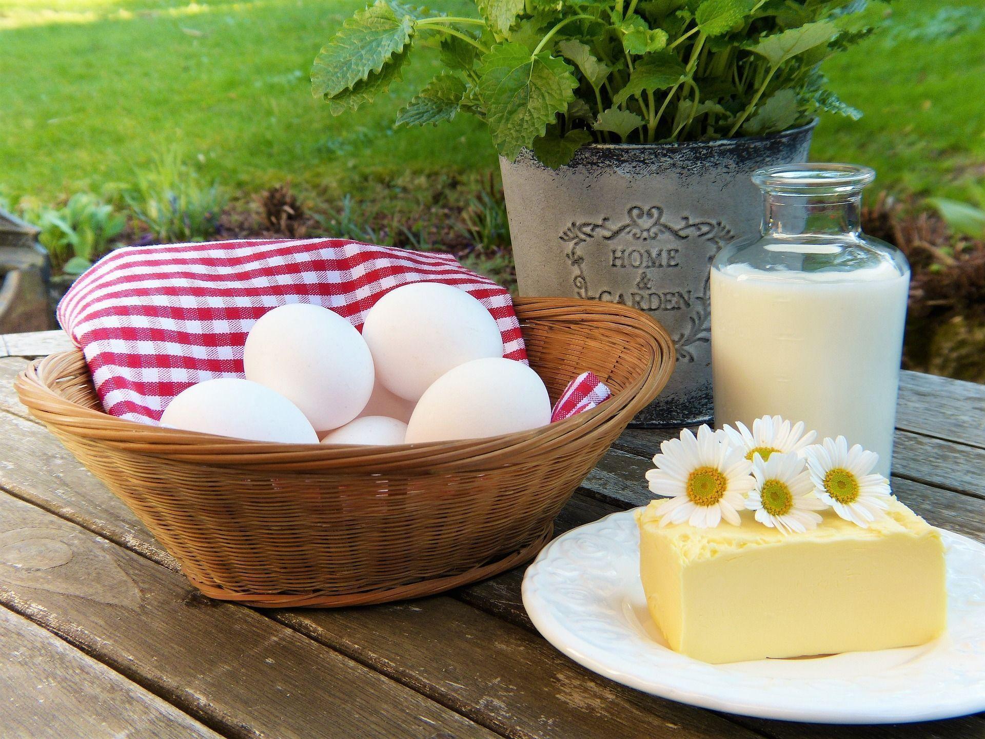 acido linoleico alimentos