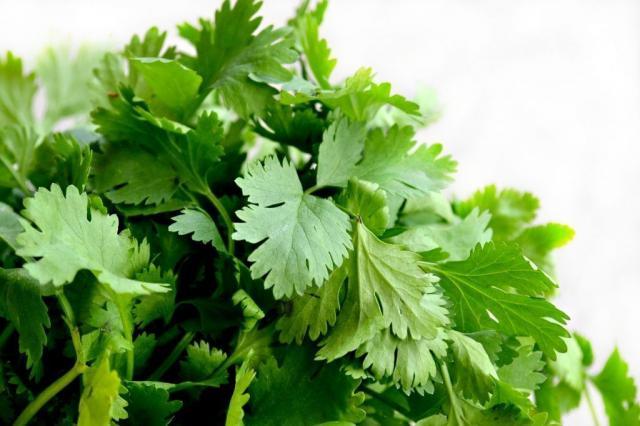 omega 3 verduras